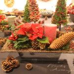 ポインセチアのクリスマスアレンジメント