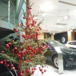クリスマスツリー 生け込み