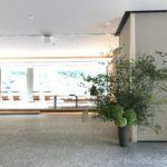 ホテル生け込み / Hotel Deco