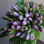 ご命日 チューリップのお花束