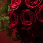 クリスマス 赤いバラの花束